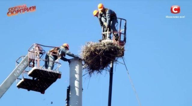 Прикарпатцю, який 28 років будував лелечі гнізда, відремонтували дах будинку. ВІДЕО 2