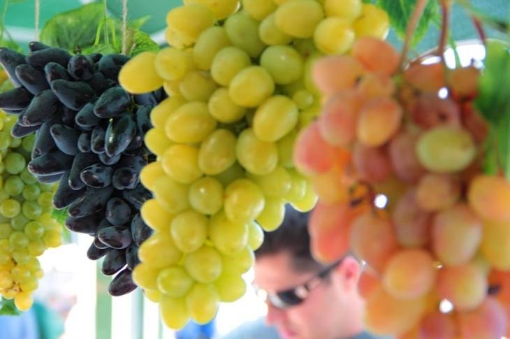 Екскурсія аеропортом, trap Іздрика та виноградні дегустації: чим зайнятися на вихідних у Франківську 2