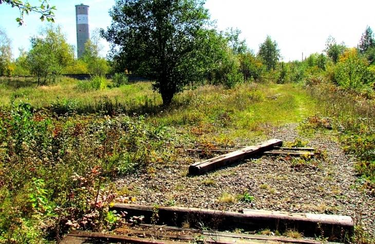 Долина фабрика