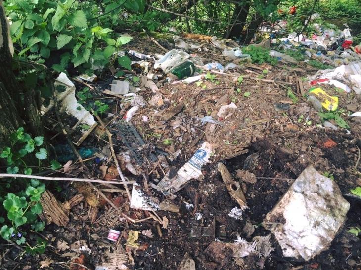 На території Пнівського замку люди зробили сміттєзвалище (відеосюжет)