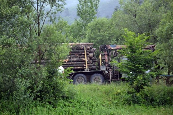 У Ворохті загорівся лісовоз