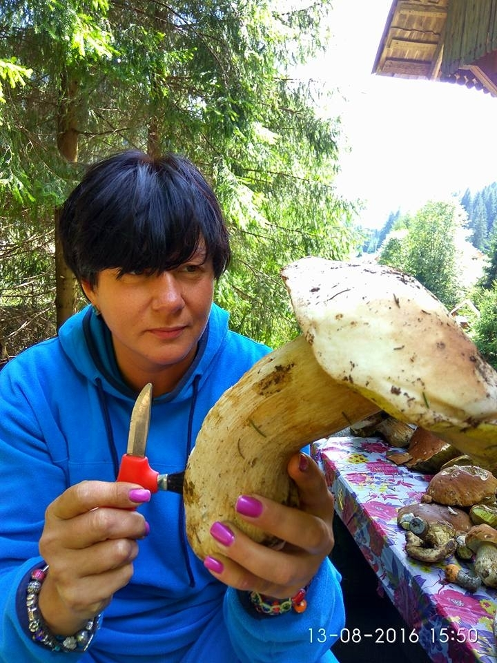 На Верховинщині – небувалий врожай грибів. ФОТОФАКТ 6