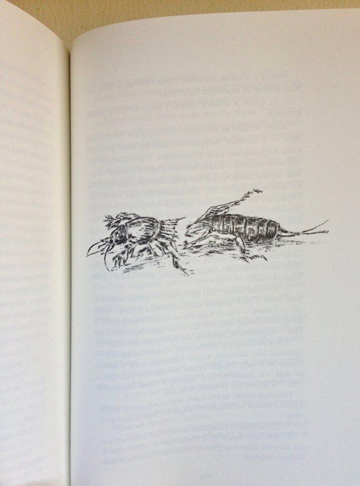 В австрійському видавництві Крістіана Тангойзера вийшла нова книжка Тані Малярчук 2
