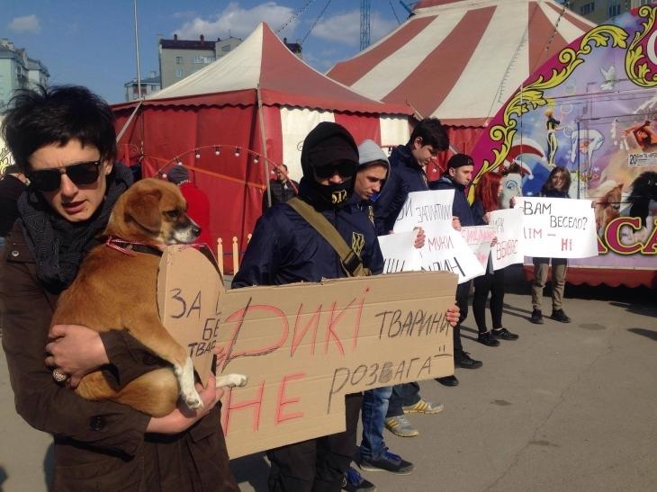 Міська рада подаватиме апеляцію, аби в місті й далі не виступали цирки з тваринами