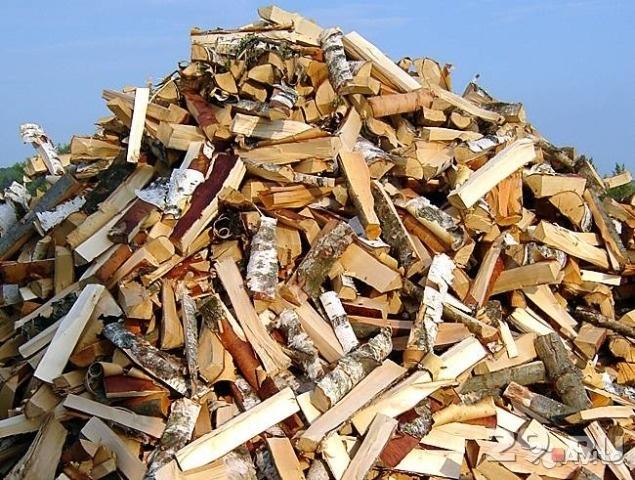 Тлумацькі освітяни купили дрова, не помітивши на тендері дві фірми одного власника