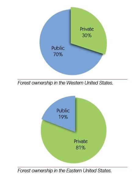 Ліси в США