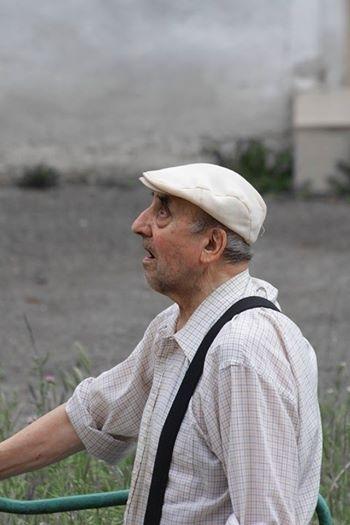 У Франківську вулицю Шевченка розчищають від дерев для чергової багатоповерхівки. ФОТО 2