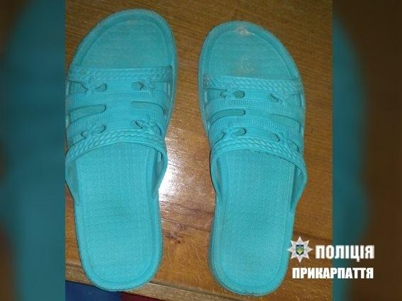 Прикарпатська поліція розкрила зґвалтування 11-річної дівчинки за півтори доби. ФОТО 2