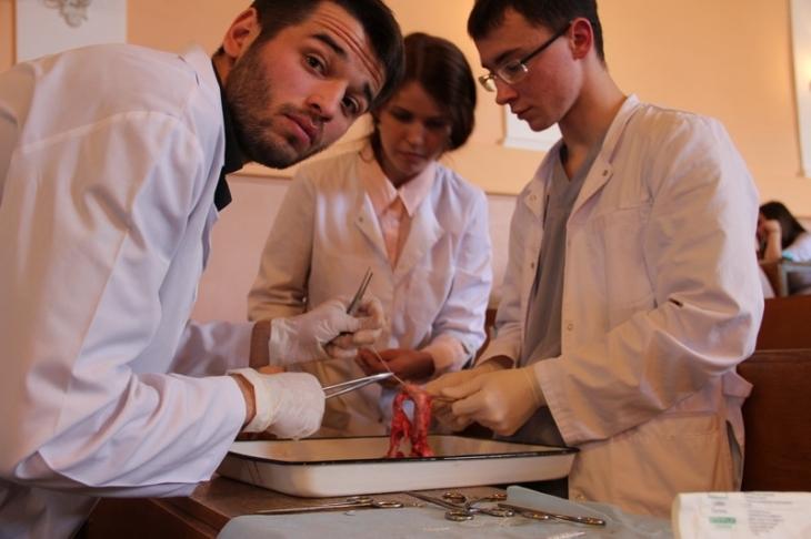Клінічне мислення: чому і як вчать в українських медичних вишах – на прикладі ІФНМУ 4