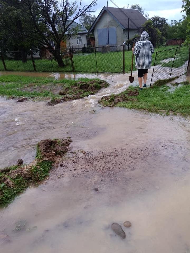 Через сильні дощі на Прикарпатті річки виходять з берегів: у Болехові затопило дороги та подвір'я. ФОТО, ВІДЕО 3