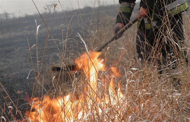 Не зважаючи на усі прохання, прикарпатці й надалі продовжують вчиняти пожежі в екосистемах області