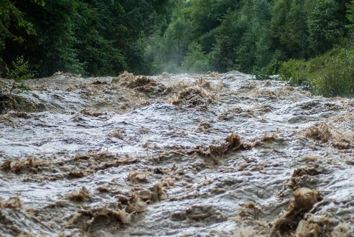 Через сильні дощі на Прикарпатті річки виходять з берегів: у Болехові затопило дороги та подвір'я. ФОТО, ВІДЕО 4