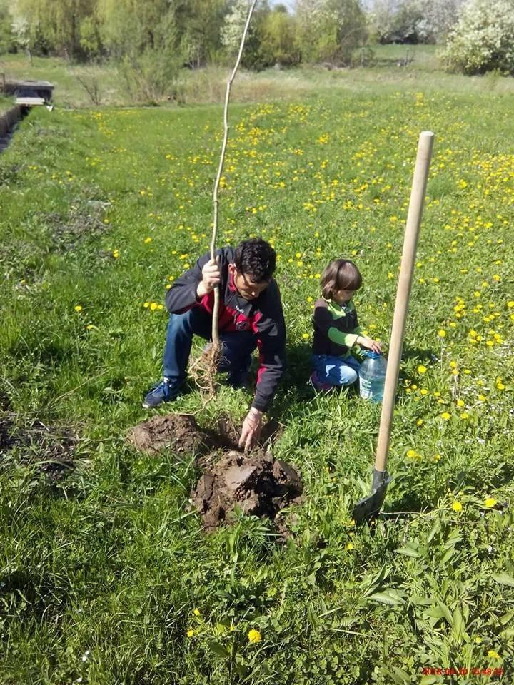 Калуські активісти висадили дуби біля старого кладовища (фото)