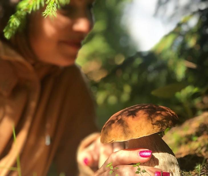 """""""Полюю на гриби"""": знавець в Карпатах водить """"грибні екскурсії"""". ВІДЕО 2"""