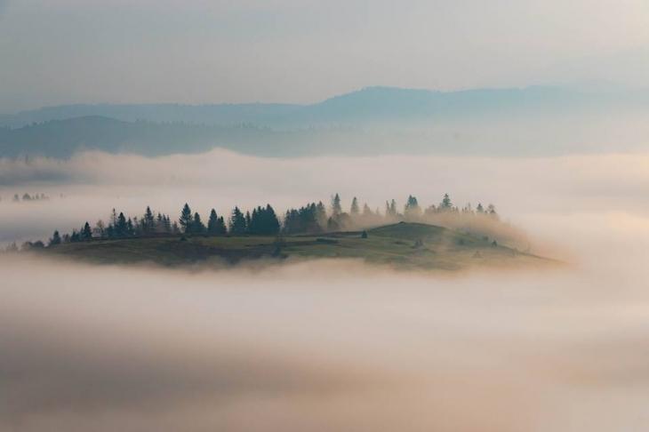 "Результат пошуку зображень за запитом ""Сонце крізь тумани: казкова осінь у Карпатах."""