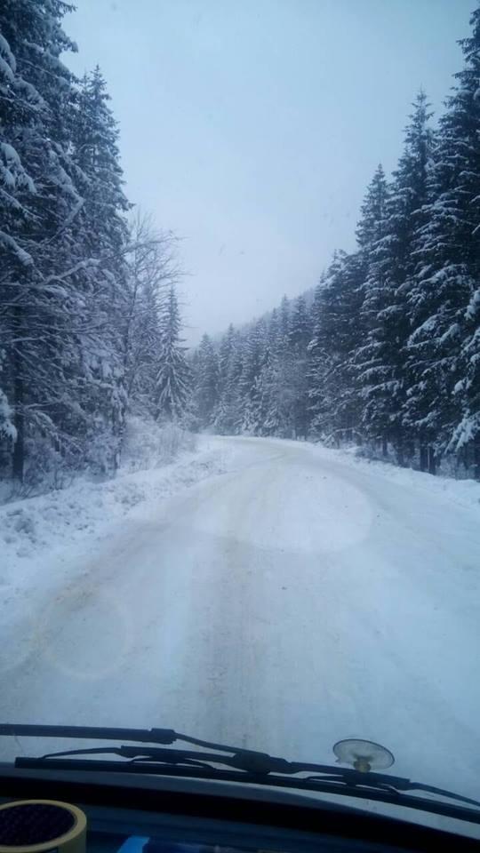 У Карпатах випало більше 10 см снігу, – франківські метеорологи. ФОТО, ВІДЕО 4