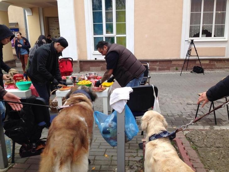 У Франківську готують бограч, глінтвейн і печуть гарбузи, щоб допомогти безпритульним котам і собакам. ФОТО 2