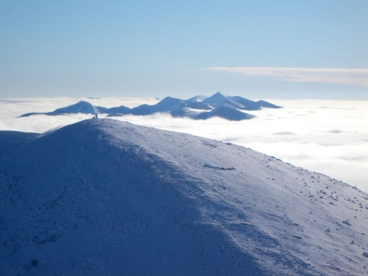 Мороз і сонце: неймовірно красиві засніжені Горгани показали в мережі. ФОТО 2
