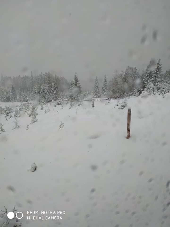 Зима у травні: Верховинщину засипає снігом. ФОТО, ВІДЕО 2