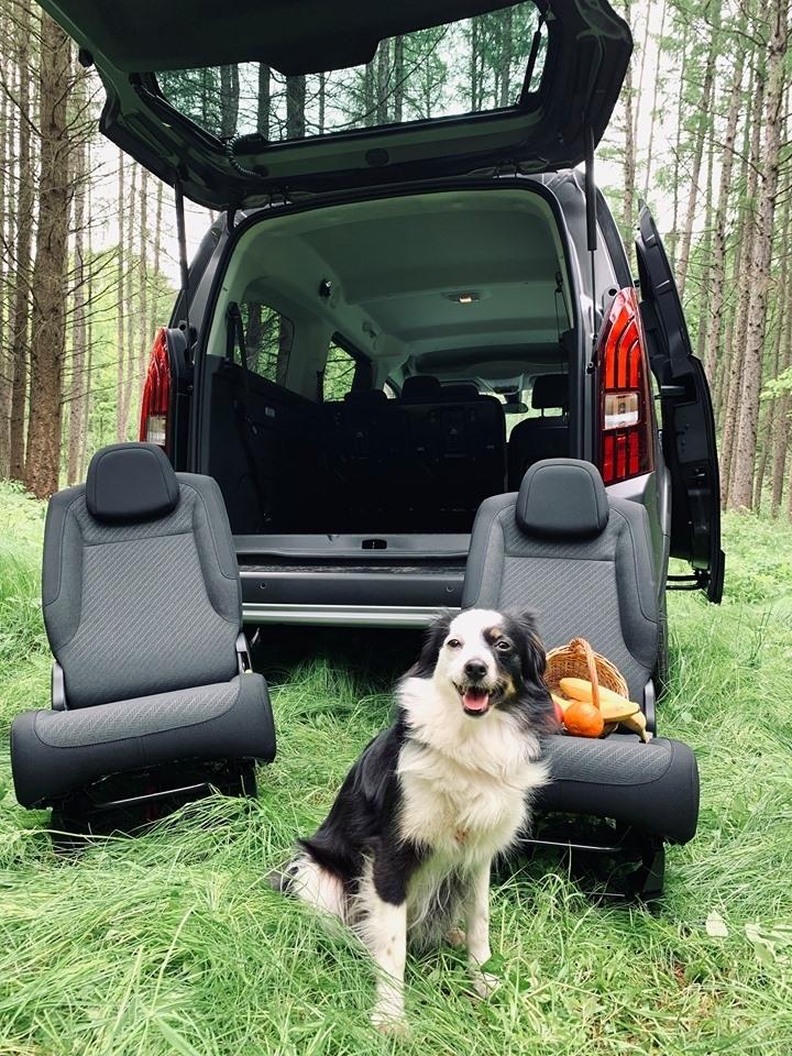 Як у лісах під Франківськом тестили NEW Peugeot Rifter. ФОТО 2