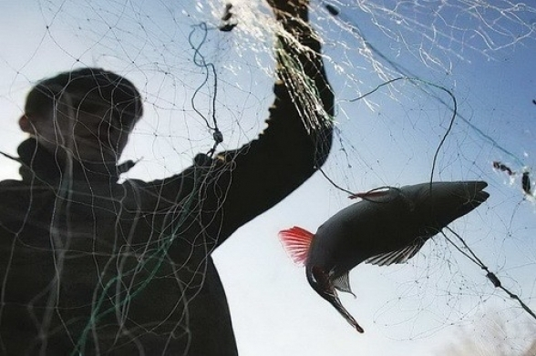 З початку січня Івано-Франківський рибоохоронний патруль затримав 36 браконьєрів