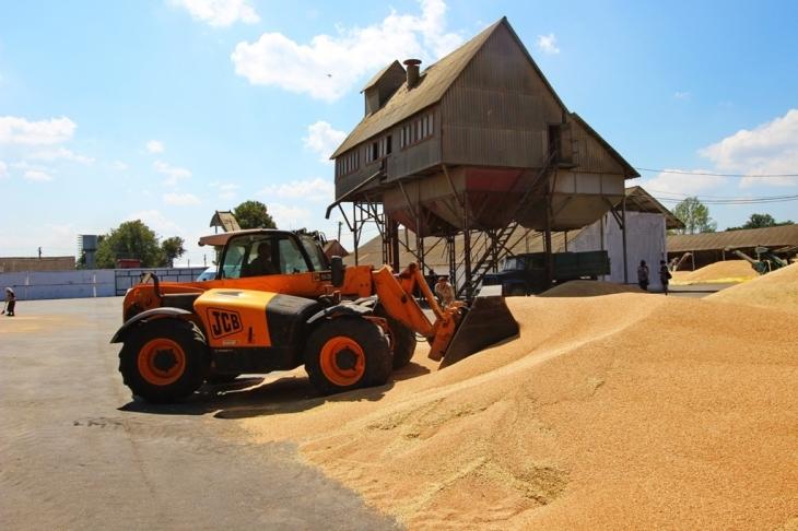 Як їм вдається: родина прикарпатських фермерів Книшуків готова годувати Європу 7