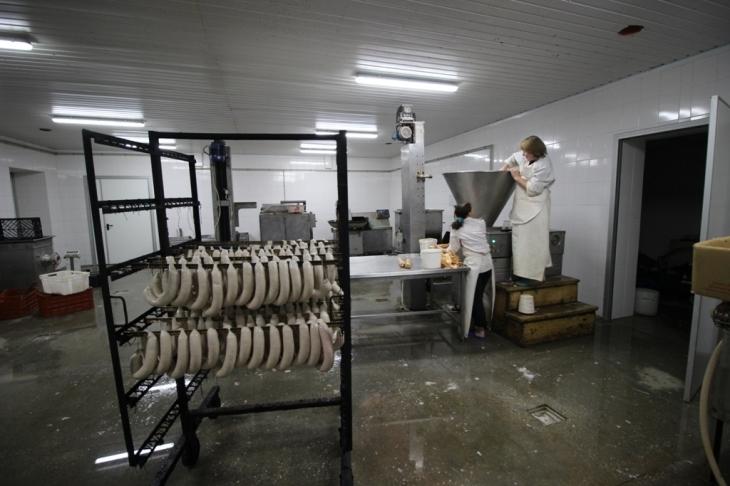 Як їм вдається: родина прикарпатських фермерів Книшуків готова годувати Європу 10