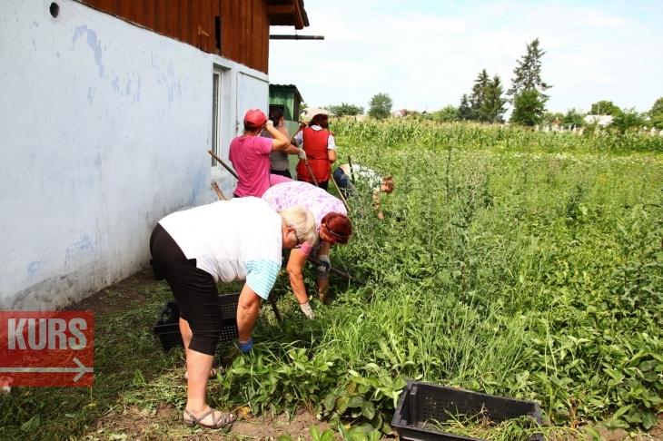 Як експорт органічної сушки допоможе господарям з Обертина врятувати землю 14