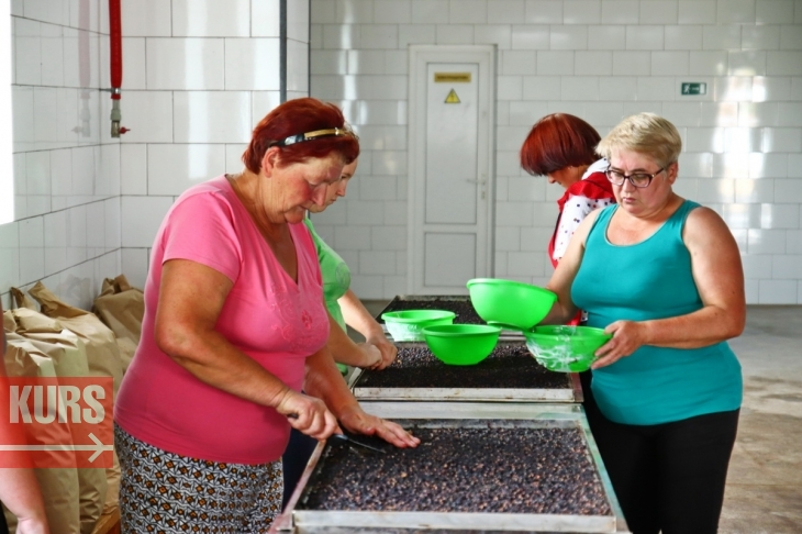 Як експорт органічної сушки допоможе господарям з Обертина врятувати землю 2