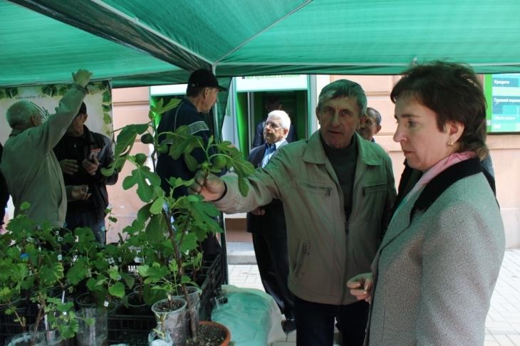 """Клуб """"Виноградарі Прикарпаття"""" презентував 100 сортів виноградів 1"""