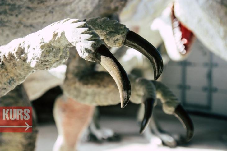 Коломия – батьківщина динозаврів 4