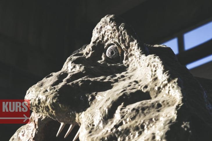 Коломия – батьківщина динозаврів 10