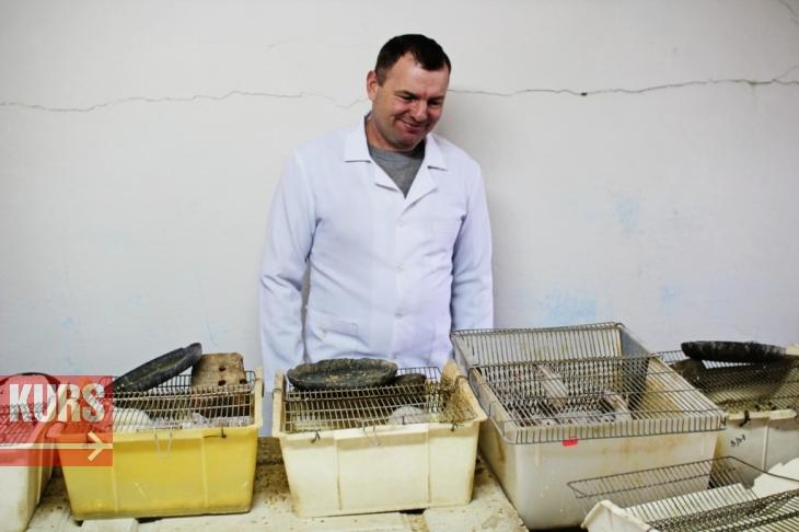Жертва заради науки: як у Франківську вирощують піддослідних тварин. ФОТОРЕПОРТАЖ 2