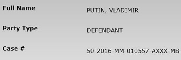 У США заарештували безпритульного Владіміра Путіна 2