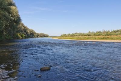 Воду прикарпатських річок перевірили на придатність до споживання