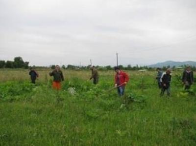 Погода в алексеевке белгородская область на 10 дней