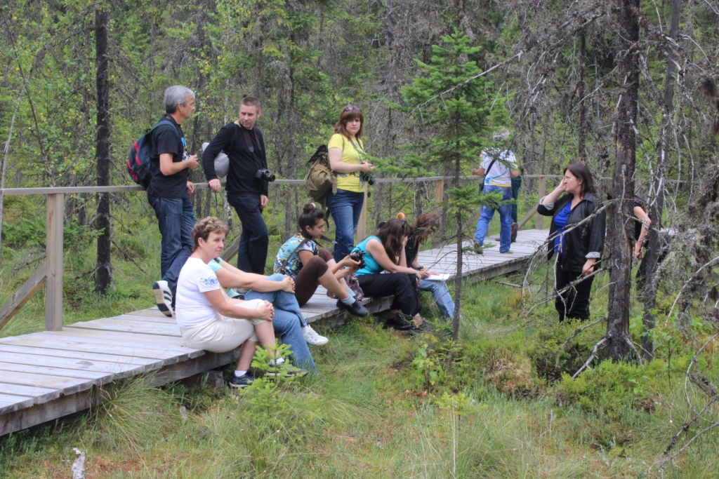 Карпатські праліси і високі полонини: КУРС побував у місцях, де ведмеді приходять у гості 24