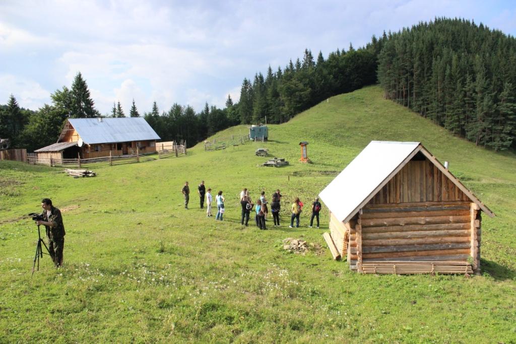 Карпатські праліси і високі полонини: КУРС побував у місцях, де ведмеді приходять у гості 36