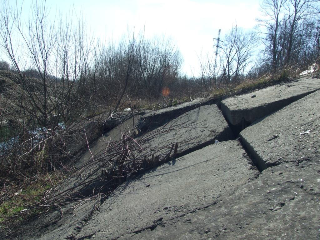 Зона ризику: у старому руслі Бистриці Надвірнянської котеджі виросли швидше, ніж дамба 4