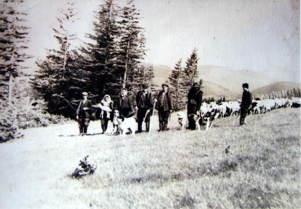 Гуцули і колгосп: як радянська влада вирощувала буряки в Карпатах 12