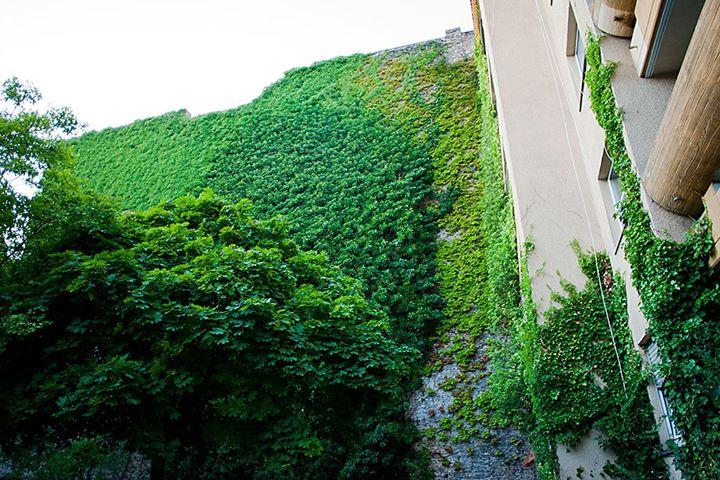 Берлін. Місто для людей - 2 31