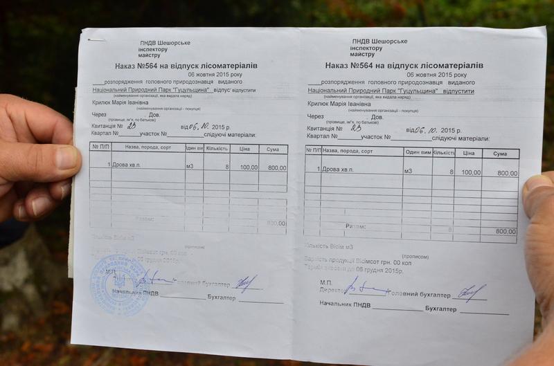 """Елітні вирубки: як НПП """"Гуцульщина"""" забезпечує дровами косівських суддів 22"""
