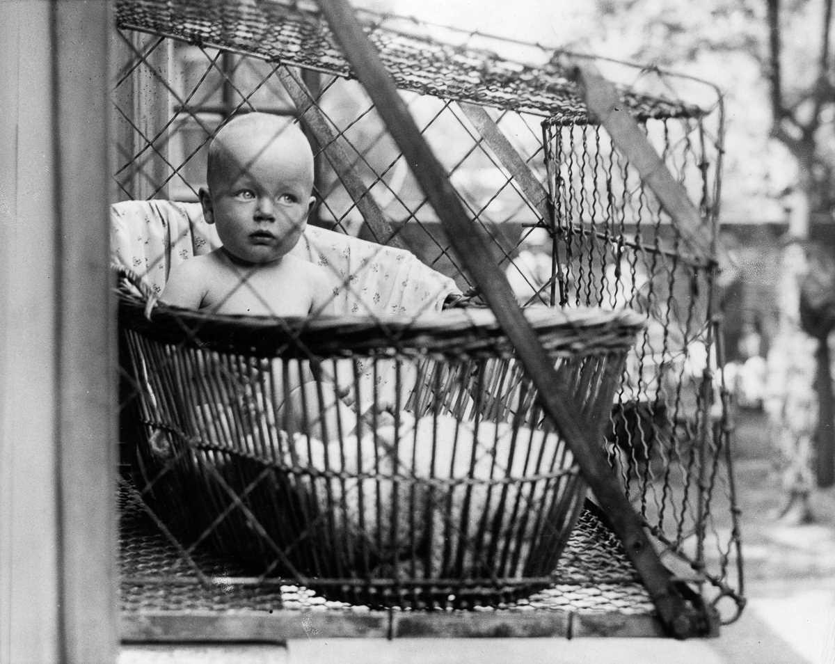 Діти в кошику