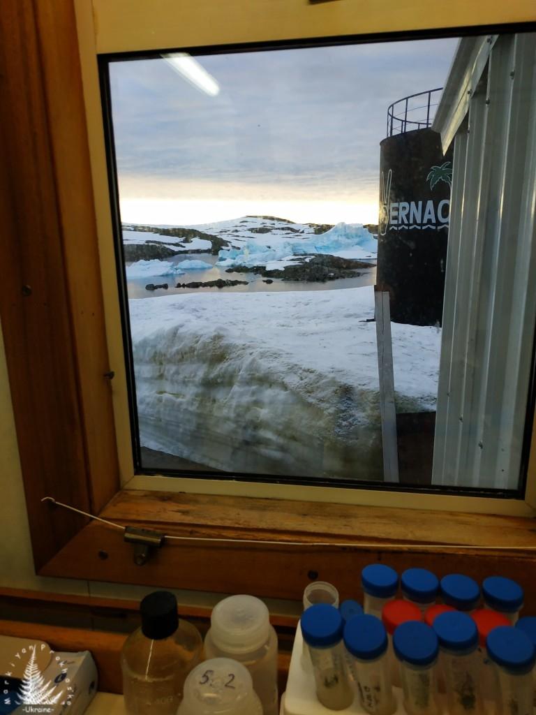 """Пункт призначення – Антарктида, станція """"Академік Вернадський"""" 46"""