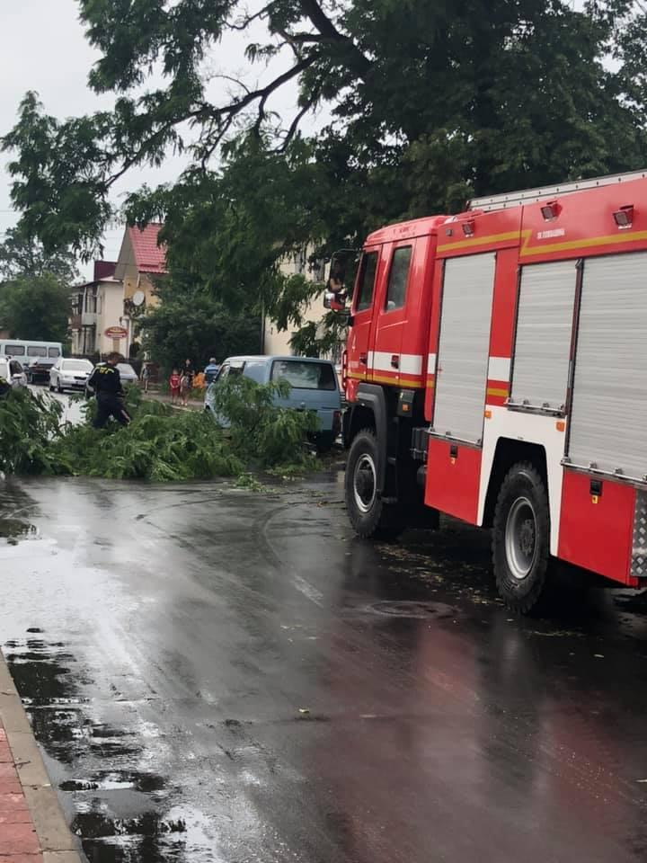 Богородчанами пронісся буревій: десятки повалених дерев, побиті машини і обірвані проводи 6