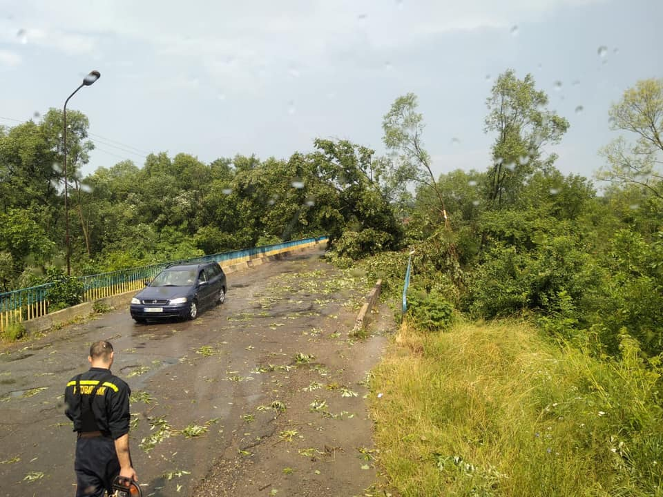 Богородчанами пронісся буревій: десятки повалених дерев, побиті машини і обірвані проводи 16