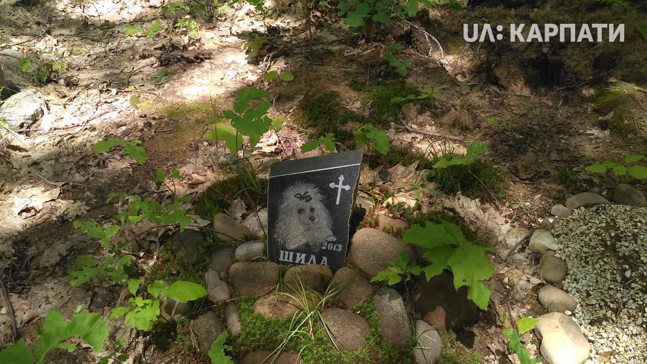 З надгробками і хрестами: франківці облаштували стихійні цвинтарі для тварин 3