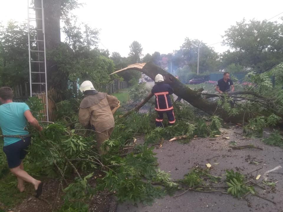 Рятувальники повідомили про наслідки стихії на Прикарпатті 4