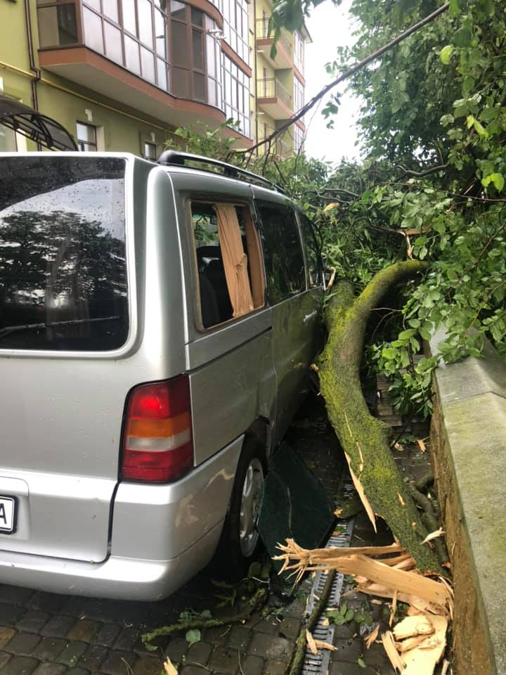 Богородчанами пронісся буревій: десятки повалених дерев, побиті машини і обірвані проводи 8