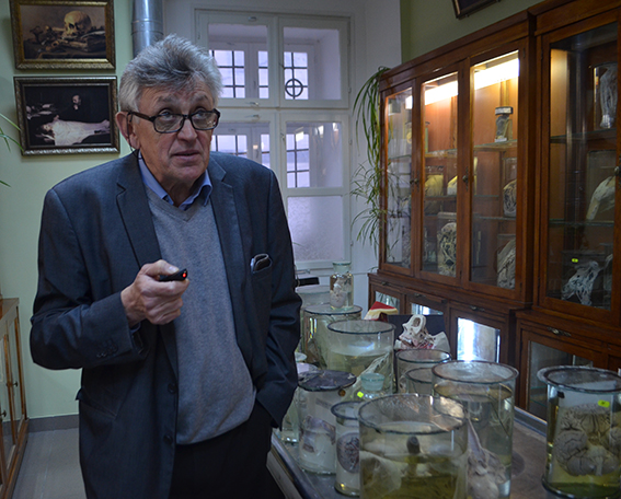 В Анатомічному музеї ІФНМУ поєднали медицину та мистецтво 1